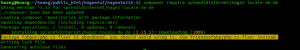 install new language in Magento 2 upgrade