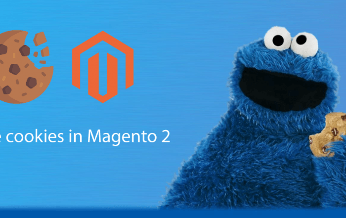 how to manage cookie in magento 2