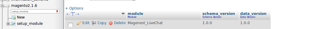 integrate live chat in magento 2