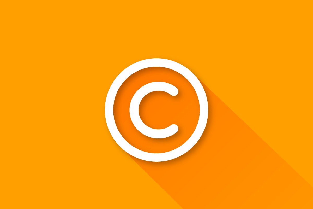 Copyright Protection for Ecommerce Websites