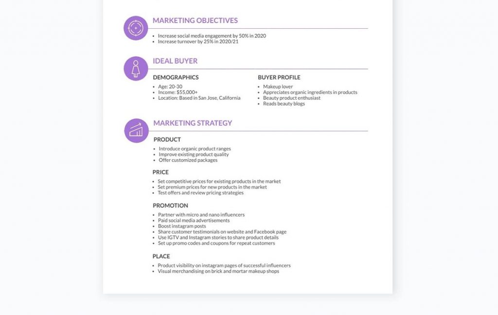 Marketing plan infographic for specialized projects