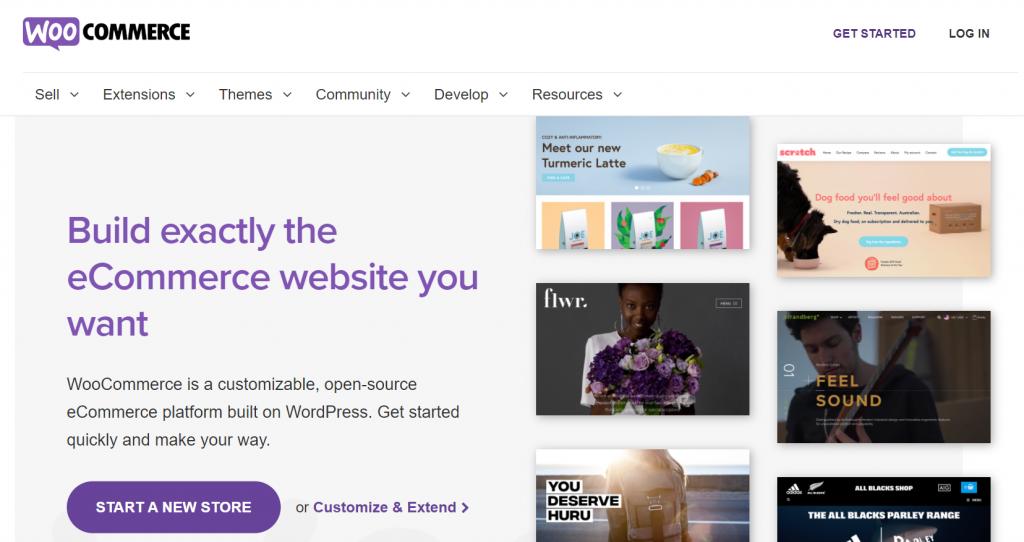Top best free eCommerce website builders: WooCommerce website